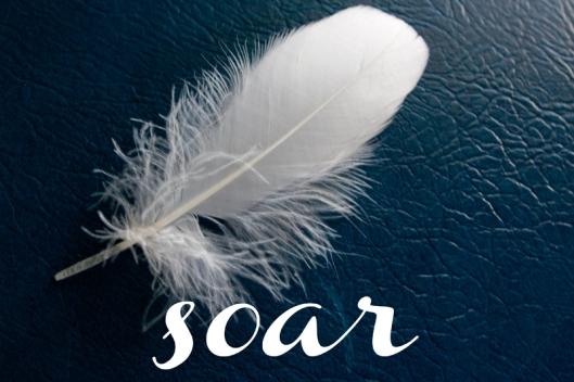 soar_01